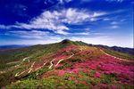 Южнокорейский курорт - остров Чеджу - реабилитация, релаксация, туризм и азарт казино в одном флаконе.